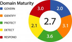 domain maturity