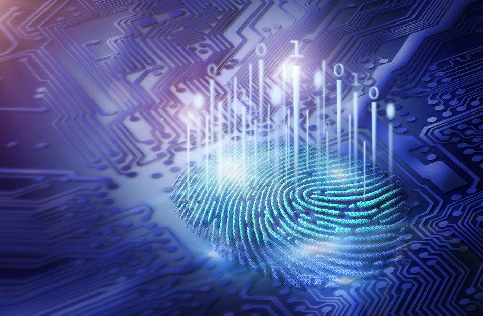 Illinois' Biometric Information Protection Act Gets More Tangled With Employment Law